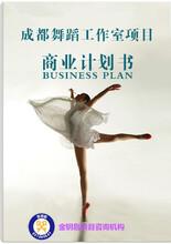 北京代写中国好项目计划书所有责任都是我们的图片