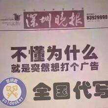 秦皇岛代写中国好项目计划书价位图片