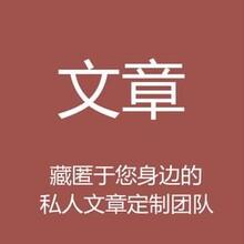 铜川代写项目众筹方案厂商图片