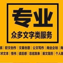 深圳代写能源审计报告定做图片