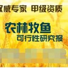 岳阳代写大学生创业计划书生产厂商联系方式图片