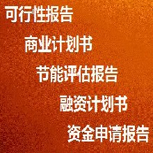 和田代写创业计划书生产厂商定制图片