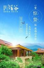 大亚湾_惠州<碧桂园润扬溪谷>丨幸福超3000000业主图片