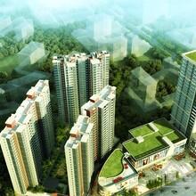 惠阳区惠州碧桂园 城市之光 历史价格趋势详情图片