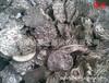 凤岗废锡回收、锡线、锡灰、锡渣回收欢迎来电