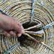 稻草秸秆废纸打包绳网液压打包机专用黄金塑料绳厂家直供