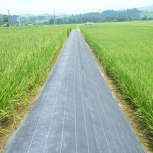 园艺、农业、果园、林业防草布除草布厂家