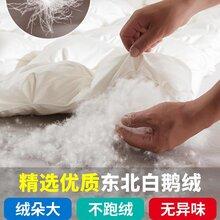 江苏羽绒被厂家定做95白鹅绒不跑绒不转绒保暖羽绒被图片