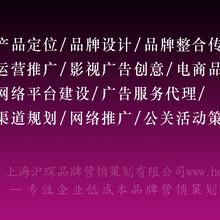 上海沪琛品牌营销策划有限公司--为企业打造行业独创LMS超低成本品牌营销系统