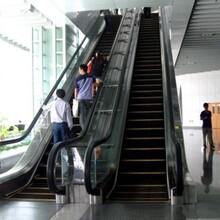 上海標尚載貨電梯回收,上海進口電梯回收放心省心圖片