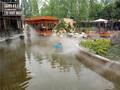 重庆南岸农家乐人造雾,农家乐喷雾,高性价比喷雾设备供应图片