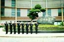 广州泰成逸园养老院国内首家医养结合新型养老院广州泰成逸园养老敬老院图片