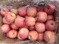 优质水晶红富士苹果产地低价批发,货源充足,保证质量图片