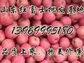 红富士苹果批发价格,苹果批发哪里最便宜红富士苹果批发价格,苹果批发哪里最便宜图片