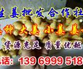 山东生姜种植基地山东大黄姜供应基地跟批发市场