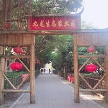 亲子游走进九龙山生态园,纵情山水间,亲子拓展一日游方案