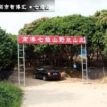 深圳农家乐哪里比较好玩七娘山野炊山庄