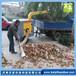 牵引式树叶收集器BY-T3吸叶粉碎机环卫园林农场落叶清扫机