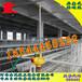 泰州智能化養雞設備金鳳雞籠層疊式肉雞龍自動養雞金鳳牧業