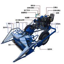 厂家直销优质芦苇割捆机芦苇收割打捆机自走式