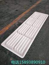 水泥漏粪板塑料模具