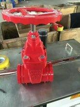 沟槽暗杆软密封闸阀生产厂家河北欧特莱球磨铸铁材质型号全