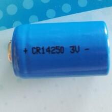 诺星公司供应智能马桶电池小便器感受电池CR14250电池9V电池组