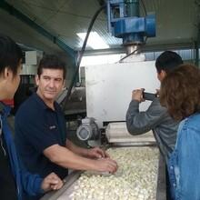 玛丽亚蒜米蒜米生产全套设备