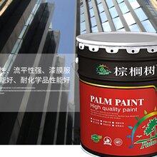 南宁内外墙涂料图片