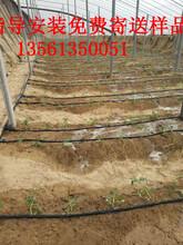 黑龙江农业大棚蔬菜滴灌带