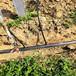 雞西果樹滴灌設計方案農田果園水利灌溉設施果園滴灌管