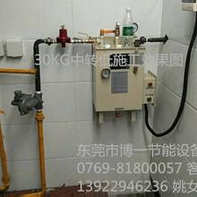 防爆壁挂气化器30KG全套二甲醚汽化炉煤气汽化炉厂家图片