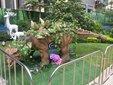 广西柳州大型恐龙展租赁恐龙主题展出租恐龙模型览道具厂家图片