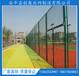 学校操场勾花隔离球场绿色包塑铁丝围墙网