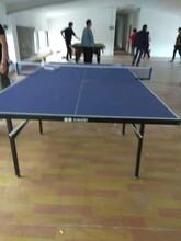 北京延庆细致北京乒乓球桌耐用图片
