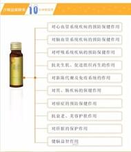 沙棘酵素的功效与作用