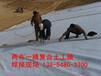 湘西(湘西HDPE土工膜价格)欢迎您
