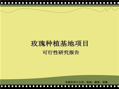 青山湖区公司代写可行性报告可以的报告会写