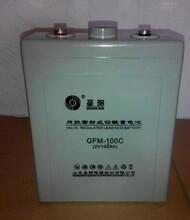 圣阳蓄电池2V100AHUPS专用圣阳蓄电池GFMD100C