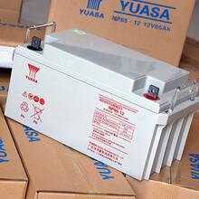 YUASA蓄电池汤浅NP6512UPS/EPS专用汤浅蓄电池12V65AH