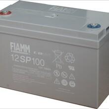 非凡蓄电池12V100AH12SP100应急UPS电源免维护铅酸蓄电池