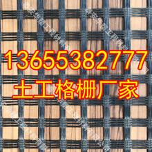 欢迎光临、广西土工格栅图片