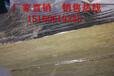 廣西巖棉保溫管殼報價新聞頻道