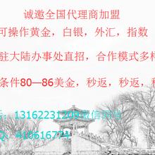 黄金平台火热招商