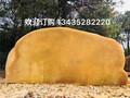温州黄蜡石出售,温州天然景观石,温州园林景观石图片