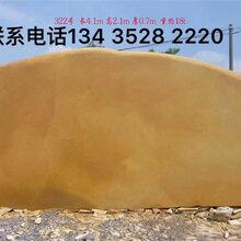 景观石哪个品种好,当然是黄蜡石