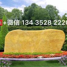 东莞景观石,东莞黄蜡石,东莞大型景观石