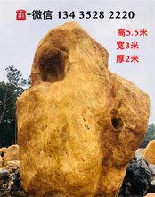 深圳景观石厂家,深圳黄蜡石批发