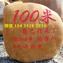 绍兴黄蜡石厂家,绍兴大型园林石,大型景观石
