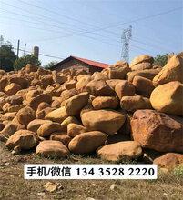 一吨假山石批发售价